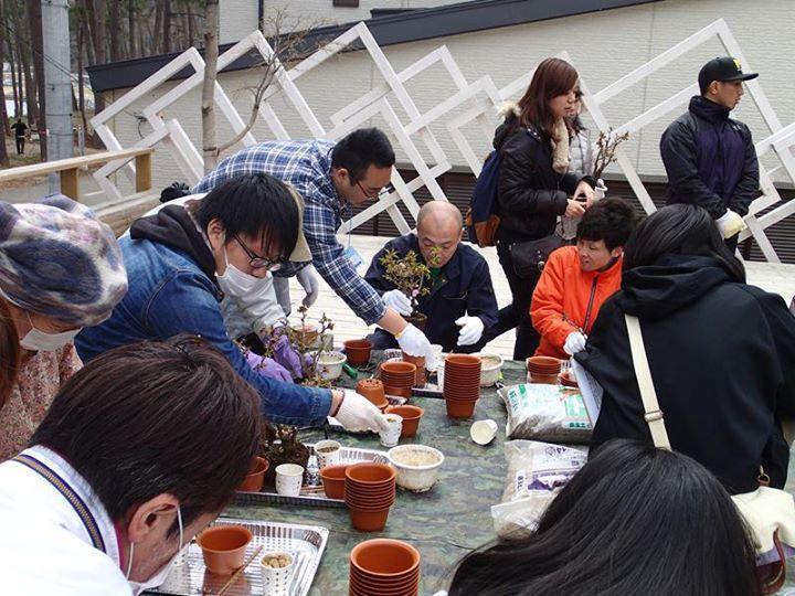 昨年の「桜プロジェクト」の様子(写真:「SAVE」のフェイスブックより)