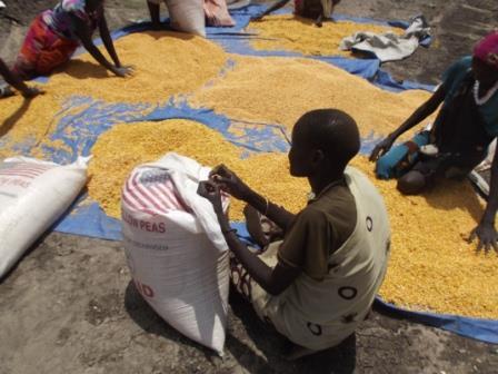 飢餓対策、国連と連携し南スーダンで避難民9千家族を支援