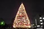 「地域の風物詩」 聖学院大学のクリスマスツリー点灯