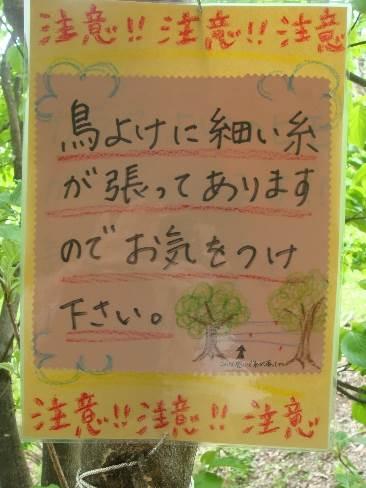 ようこそ!みのり農場へ(15) 星野敦子