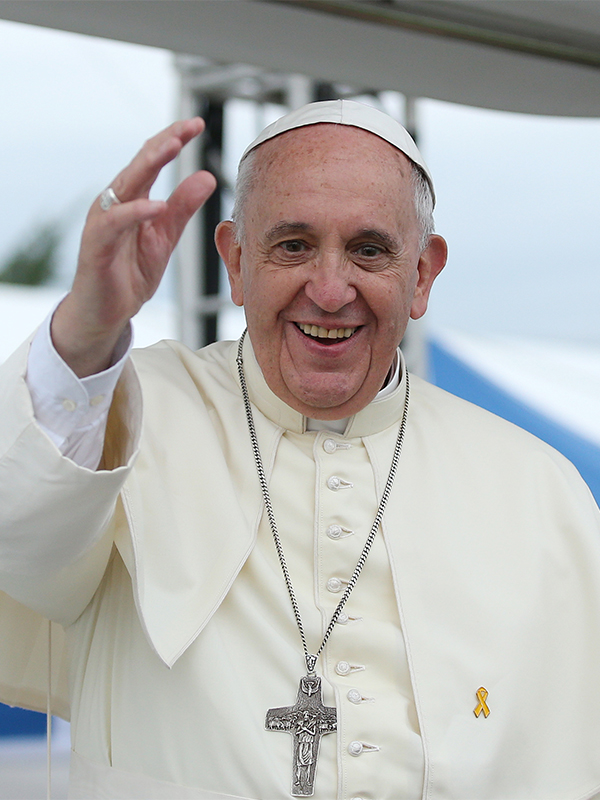 ローマ教皇、回勅「ラウダート・シ」発表 環境問題で回心呼び掛け 正教会・WCC・聖公会も歓迎