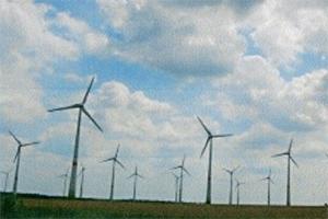 集中的に建設されているドイツの風力発電=2011年11月(写真:「みどりの1kwk」提供)<br />