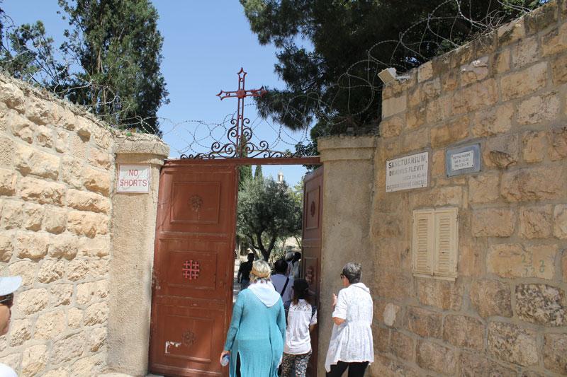 妹尾光樹のイスラエル旅行記(4)