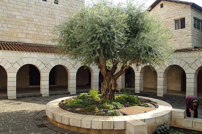 放火事件があった「パンと魚の奇跡の教会」の中庭(写真:David Shankbone)