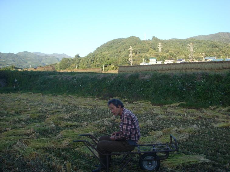 ようこそ!みのり農場へ(19) 星野敦子