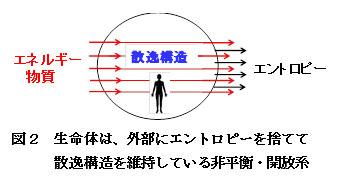 【科学の本質を探る⑭】複雑系における秩序形成と生命現象(その1)生命体と自己組織化、散逸構造 阿部正紀