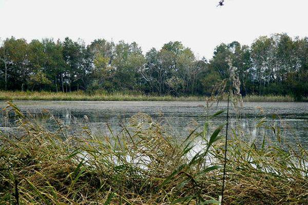 秋のペケレット湖(写真:Kinori)