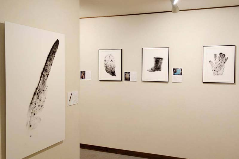 あの日を忘れない 放射能汚染を視覚化する「放射線像・写真展」首都圏リレー