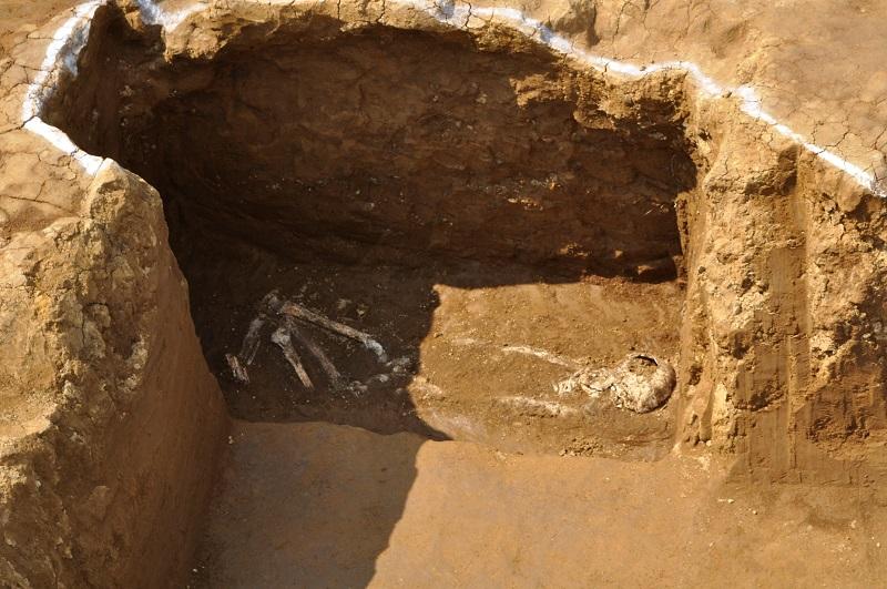 発見されたシドッチのものと思われる人骨(写真:東京都文京区)