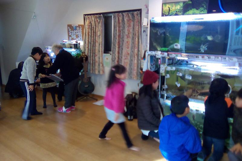 水槽の前から離れない子どもたち。多くのボランティアの力に支えられ、毎日オープンすることができている。(写真:日本ナザレン教団花園キリスト教会提供)