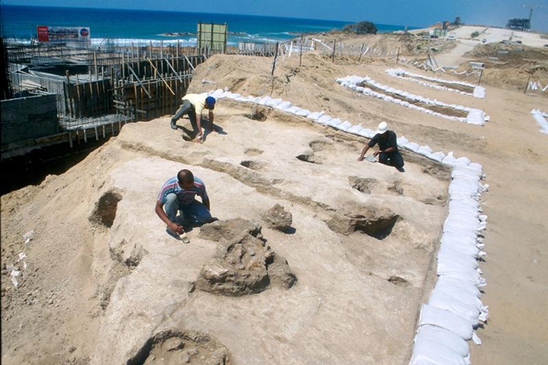 イスラエル南西部の海岸都市アシュケロンの発掘現場の様子。今回は、古代アシュケロンの城壁の外側に広がる海岸で、旧約聖書に登場するペリシテ人の墓地が見つかったという。(写真:Yaels)