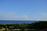 戦後71年:沖縄戦を語り継ぐ 恒久平和を求める沖縄の心「命どぅ宝」
