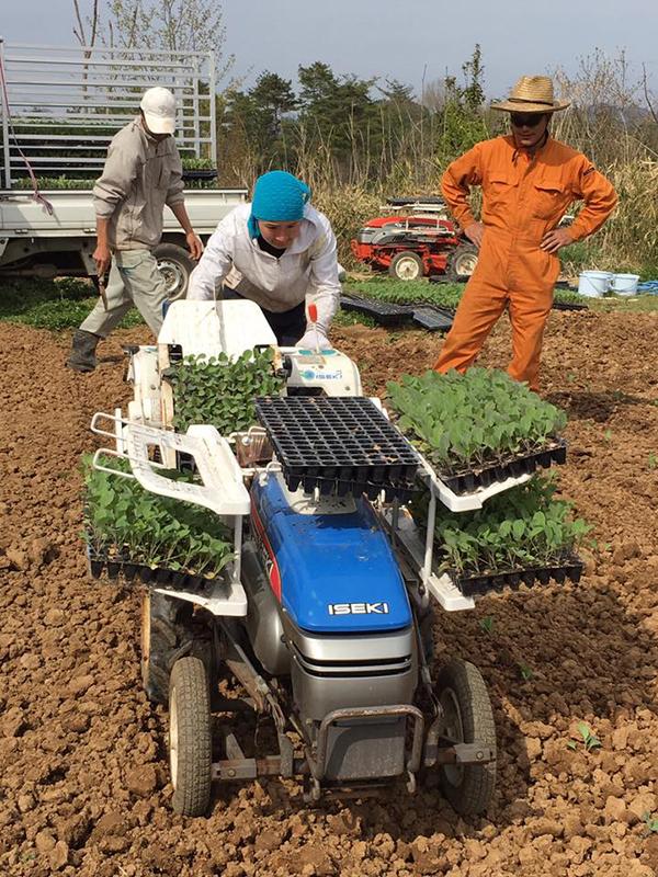 真昼の太陽に照らされながら農作業を続けていくうちに「意欲」が湧いてきたという生徒も。プログラム終了後は農業で自活していくためのサポートも受けることができる。