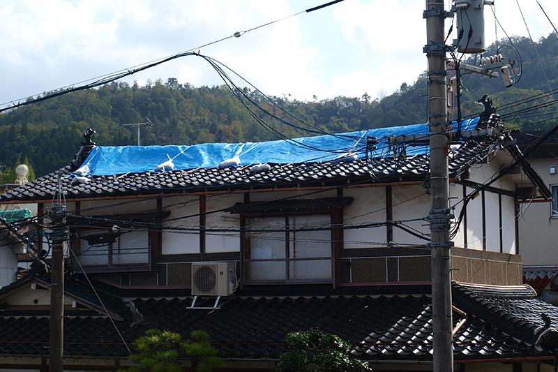 昔ながらの瓦屋根が主流の地域。ブルーシートは24日から行政が配布を始めた。枚数がわずかで慢性的に足りていないという。瓦が落ちて屋根に穴が開き、雨漏りの被害を受けている住宅が多い=27日、鳥取県倉吉市内で