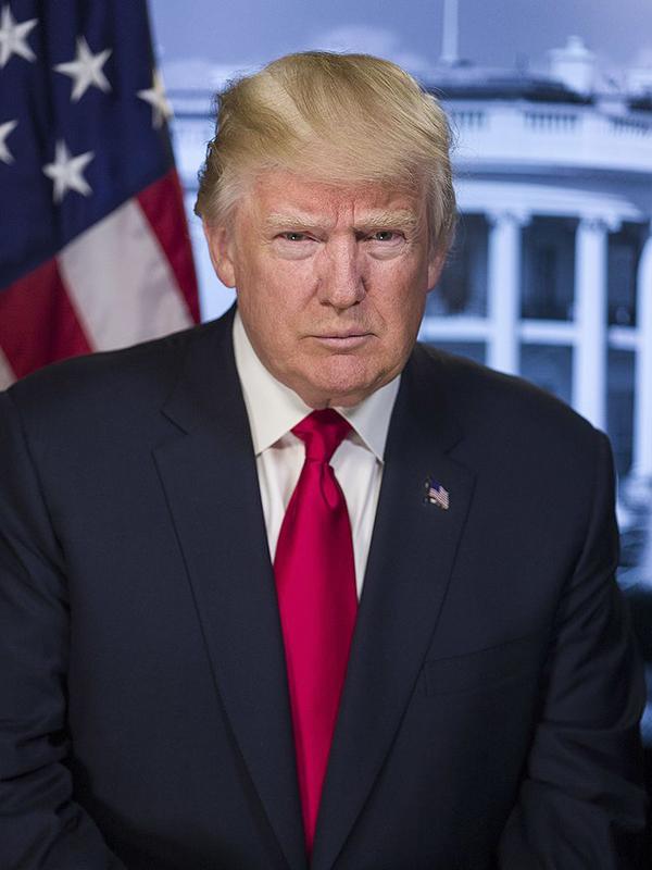 ドナルド・トランプ米大統領(写真:ホワイトハウス)