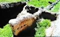 シルクロード&バイブルロードの中継点 中央アジア・キルギス見聞録(3)