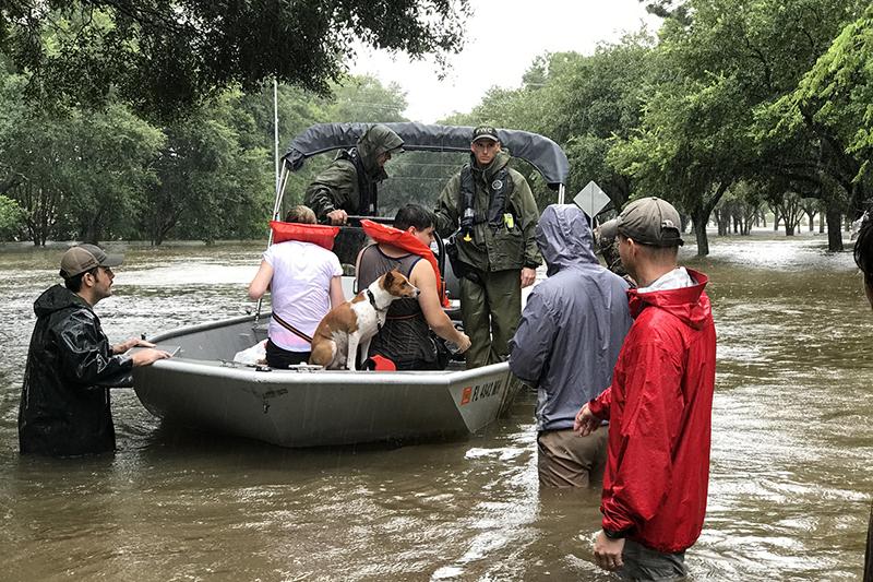 救助されるハリケーン「ハービー」の洪水被災者(写真:FWC / Gus Holzer)<br />