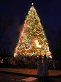 埼玉県:聖学院大学クリスマス点火祭 11月29日