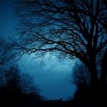 福音の回復(50)闇の中に光を見た 三谷和司