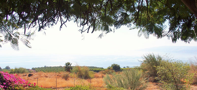 FINE ROAD(65)イスラエルの旅シリーズ②山上の説教の教会 西村晴道