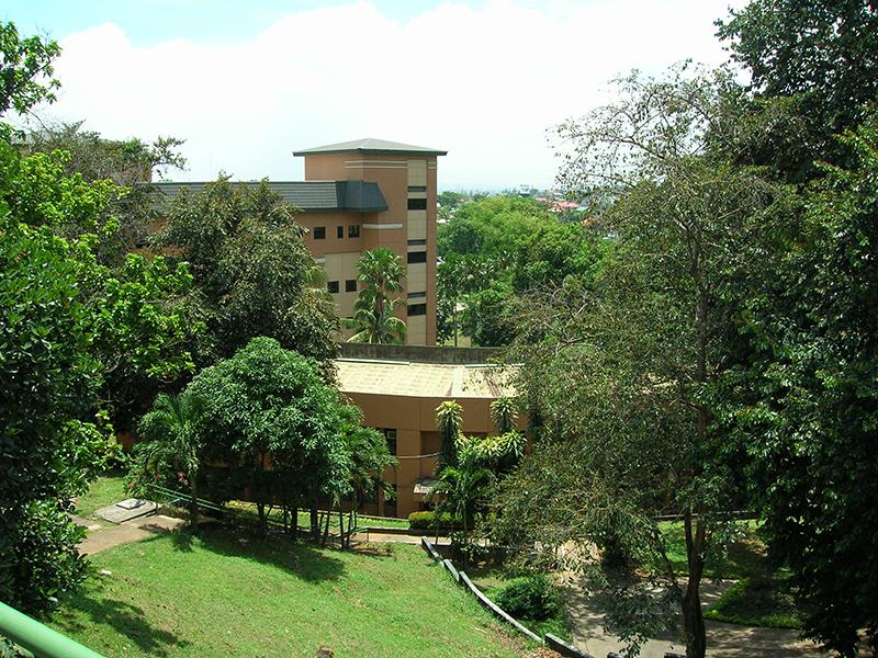 フィリピン・マニラ近郊にあるアジア・パシフィク・ナザレン神学大学院のキャンパスの一部。全体が熱帯樹木に覆われている。(2006年10月ごろ)