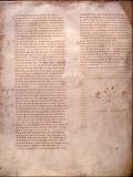 京大式・聖書ギリシャ語入門(3)「愛の中に住む人は神の中に住む」ー文字の後半および動詞の活用と語順の基礎ー