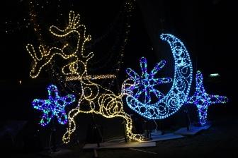 学生制作のクリスマス・イルミネーションがキャンパス彩る 関東学院大でイブまで