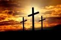 コヘレト書を読む(19)「罪を犯さない人はいない」―十字架への道をおぼえて―臼田宣弘