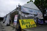 月桃通信(11)朝鮮半島南北統一を祈る旅 石原艶子