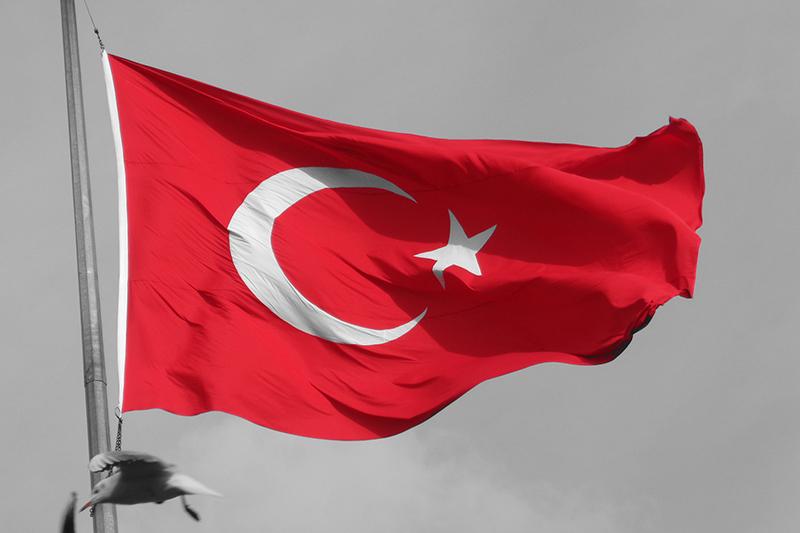トルコの国旗(写真:Scared Lynx)