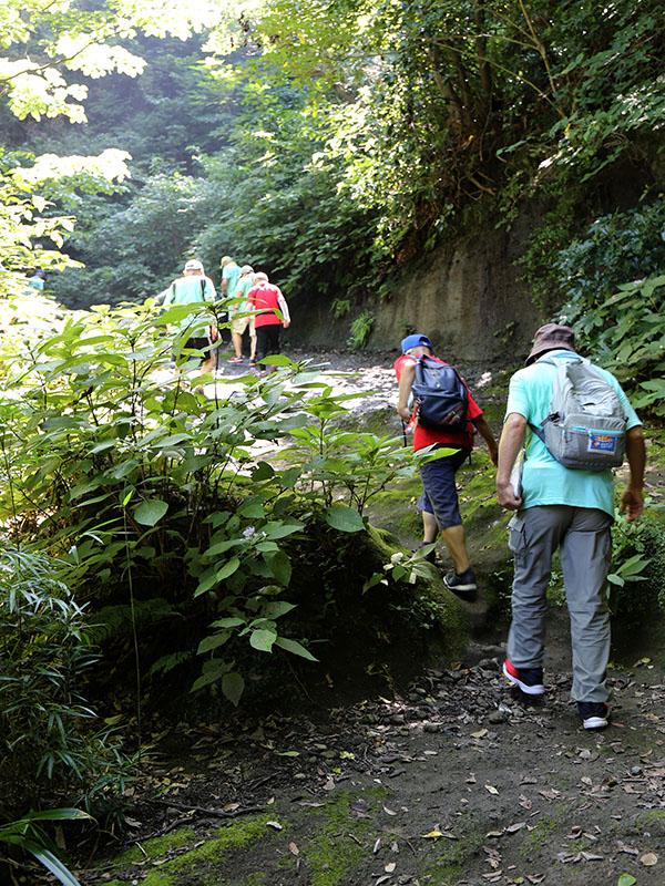 鎌倉街道160キロを歩いて伝道 「ウォーク・ウィズ・ジーザス」今年も始まる
