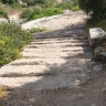 京大式・聖書ギリシャ語入門(20)「さらに地の果てまで、私の証人となる」―繋辞動詞の未来形―