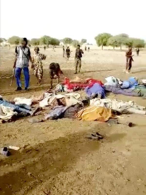 ナイジェリアで武装勢力襲撃、81人死亡 ボコ・ハラムの犯行か