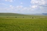 世界宣教祈祷課題(8月6日):中国-内モンゴル自治区