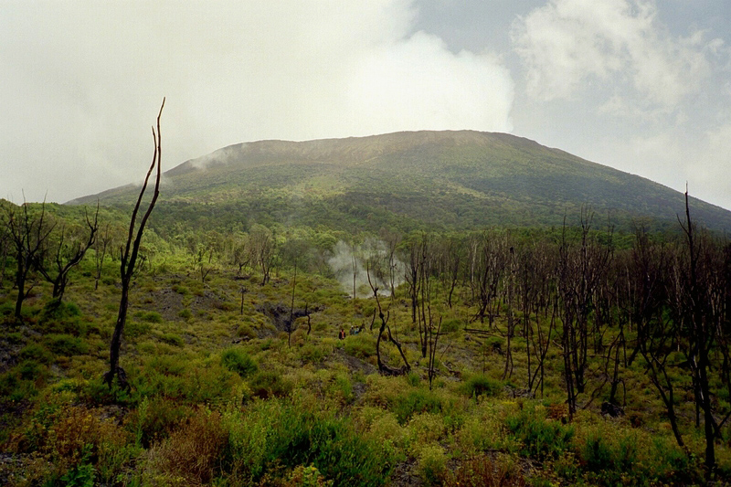 コンゴ民主共和国北東部にあるヴィルンガ国立公園(写真:Ishidro)