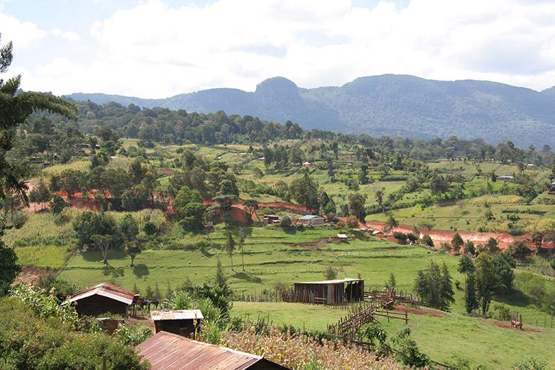 ケニアの農村(写真:Masai29)