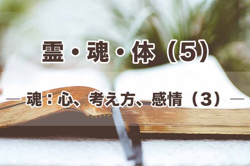 霊・魂・体(5)魂:心、考え方、感情(3) 加治太郎