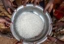 「飢饉は防げる」 WEA、WCCなどが世界食料デーで共同声明